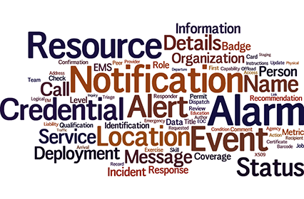Emergency Management Word Cloud